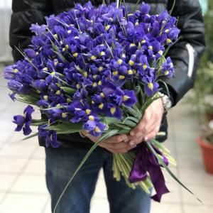 Букет синих ирисов